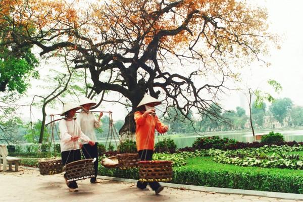 Hanoi Old Quater, Hanoi, Hanoi Tour, Hanoi City Tour