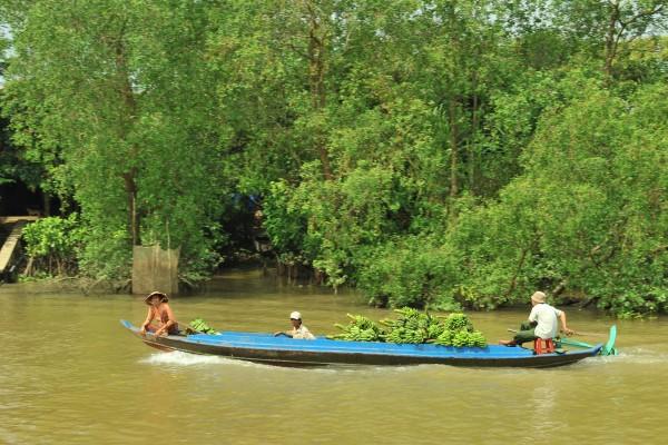 Vinh Long, Mekong Delta