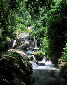 Cuc Phuong National Park, Cuc Phuong National Park Travel