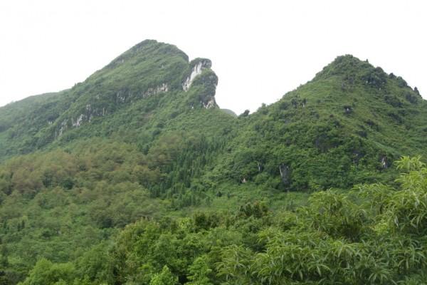 Ham Rong Mountain, Lao Cai