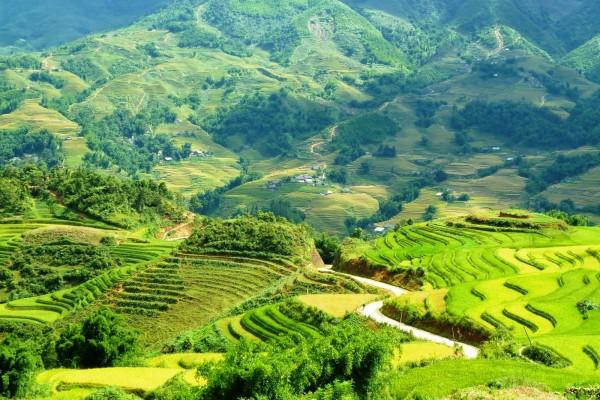 Muong Hoa Valley, Sapa Tour, Sapa Tour
