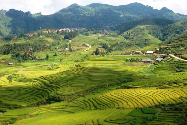Ta Phin Village, Sapa, Lao Cai.