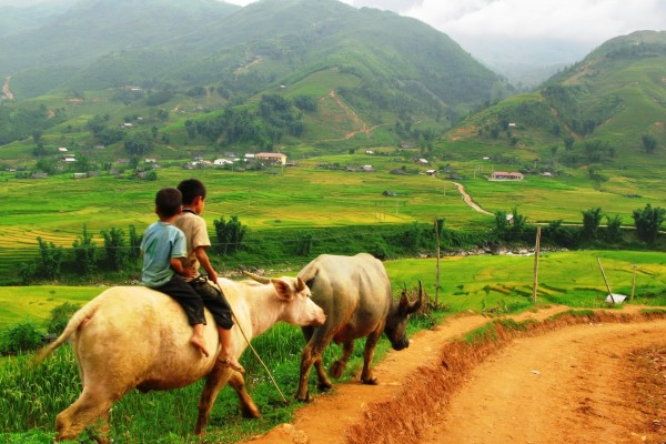 Sapa travel guide, Sapa tour