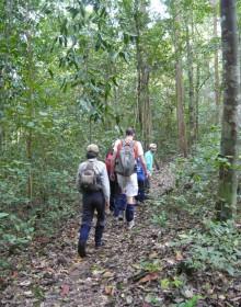 Trekking Tour to Nam Cat Tien National Park, Nam Cat Tien National Park
