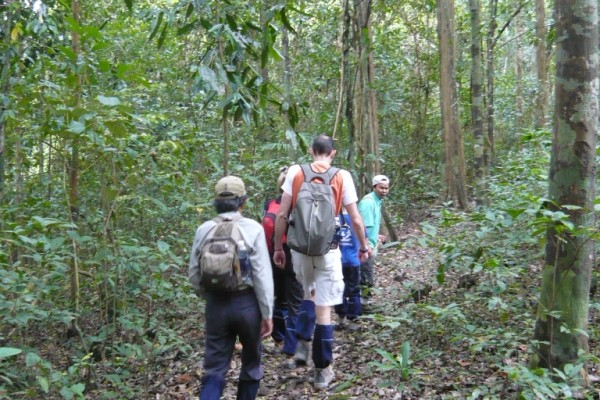 Trekking Tour to Nam Cat Tien National Park, Nam Cat Tien National Park