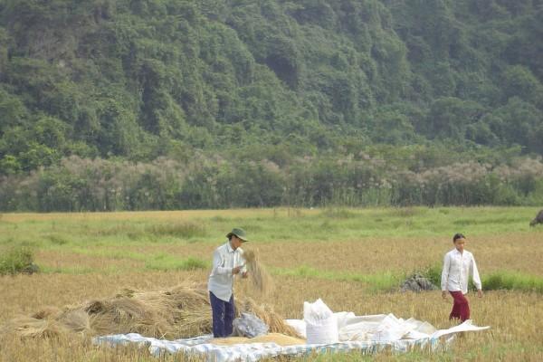Viet Hai Village, Cat Ba Island