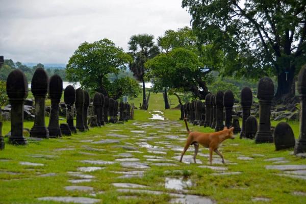 Wat Phou, Wat Phou Tours, Wat Phou in Laos