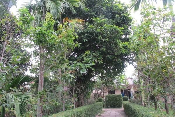 Hue Garden House, Garden House in Hue, Hue Tour