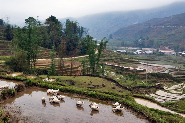 Lao Chai Village, Sapa, Sapa Tours, plan a trip to vietnam and cambodia