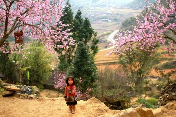 children in sapa, sapa local life, sapa, ethnic