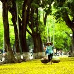 hanoi street, hanoi old town, hanoi city tour