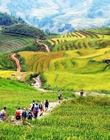 Vietnam Sightseeing & Beaches