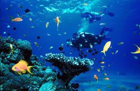 Mot Island Travel Guide, Nha Trang Honeymoon Holidays