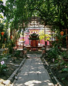 tour around saigon