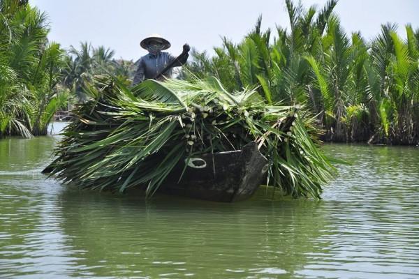 cam thanh village hoi an, hoi an travel guide, hoi an travel
