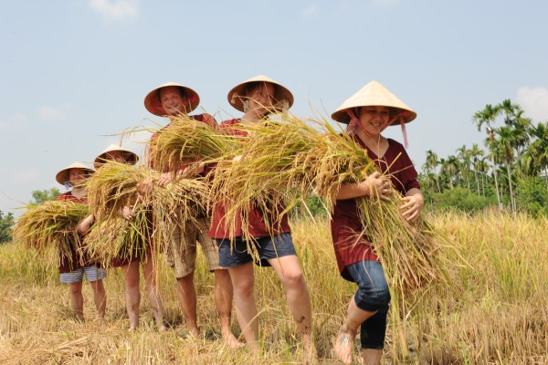 hoi an travel guide, hoi an tour, hoi an travel