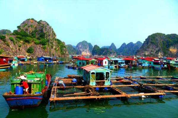 Ba Hang Fishing Village, Halong Bay, Vietnam Cruise