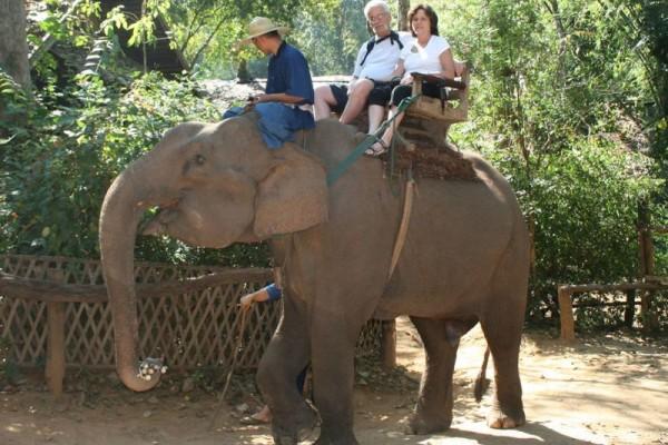 Chiang Dao Elephant Camp, Chiang Mai, Thailand