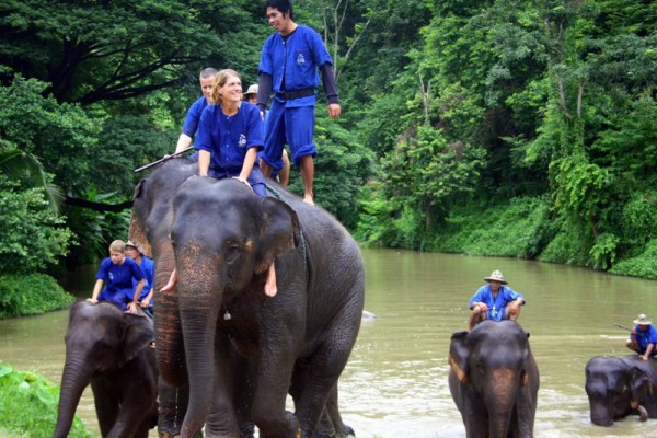 Lampang Elephant Conservation Center, Thailand