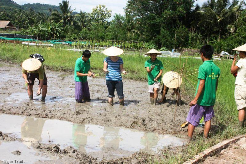 Lao Rural Life 4 Days Tour Luang Prabang Vacation Laos