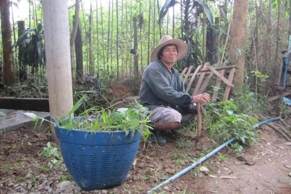 Organic Farm, Vang Vieng, Laos, laos tour, laos travel, laos holiday, holiday to laos, what visit in laos