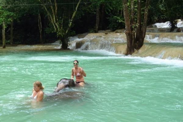 Tad Sae Waterfall Elephant ride & bathing, Luang Prabang, Laos