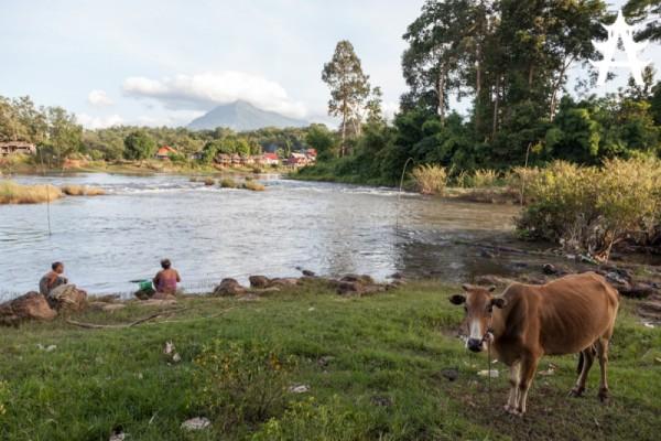 The Bolaven Plateau, Pakse, Laos