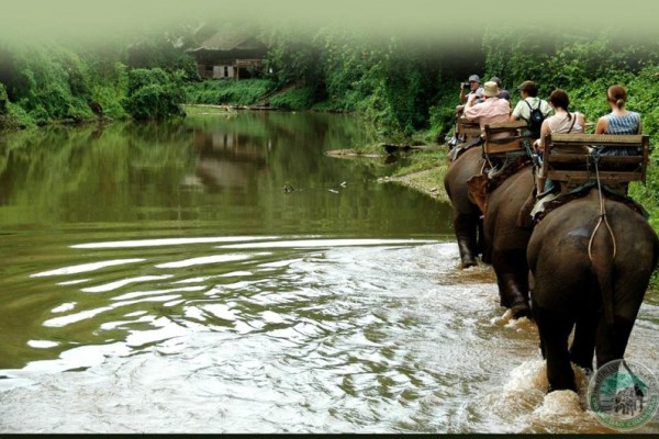 Chiang Dao Elephant Camp, Thailand, Chiang Mai