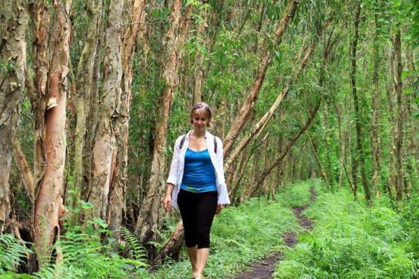 Tra Su Cajuput Forest in chau doc