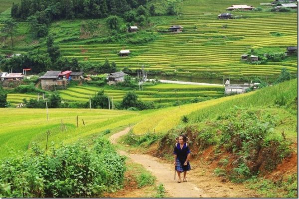 Vu Linh, sightseeing in Yen bai, travel, tour