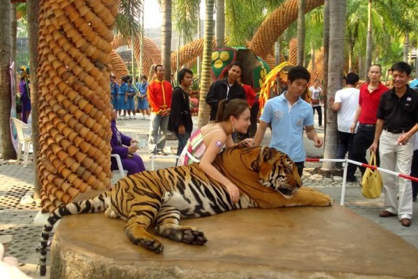 Sriracha Tiger Zoo Travel Guide Tours Pattaya Thailand