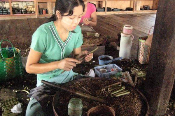 Cherrot factory, Myanmar, Inle Lake