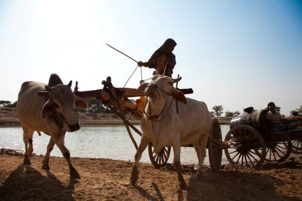 Dry Zone, Travel Guide, Myanmar